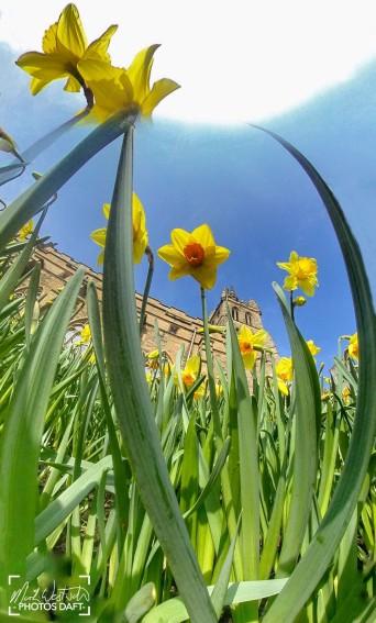 St. Leonard's in the Fields - April 2018