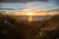 North Berwick Beach March 2019